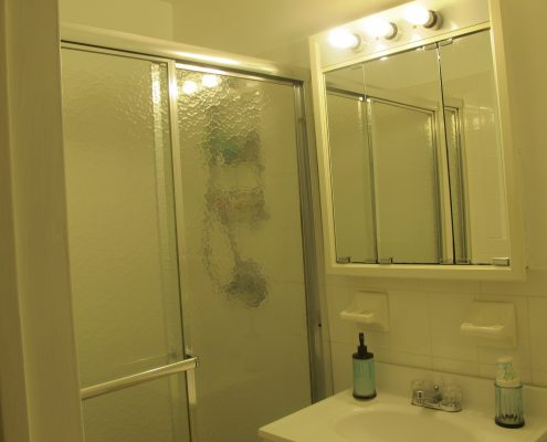 145 Lincoln Ave bathroom 2